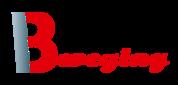 Bweging Fysiotherapie logo