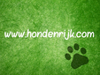 hondenrijk logo