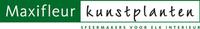 Maxifleur logo