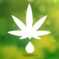 Cannabisolie.com logo